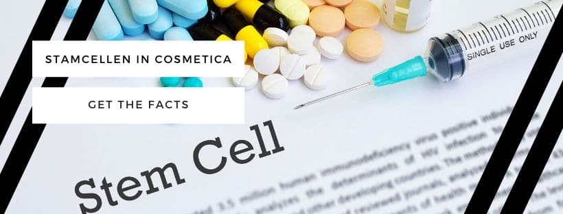 stamcellen huid